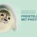 Photoshop Tutorial: Freistellen mit Photoshop