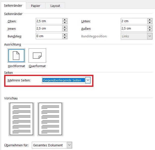 Magazinformat einstellen in Word Screenshot